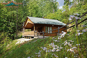 A Tyme To Remember 1 Bedroom Romantic Escape Cabin In The Nantahala Smoky  Mountains