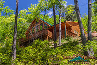 Mountain Muse Log Cabin