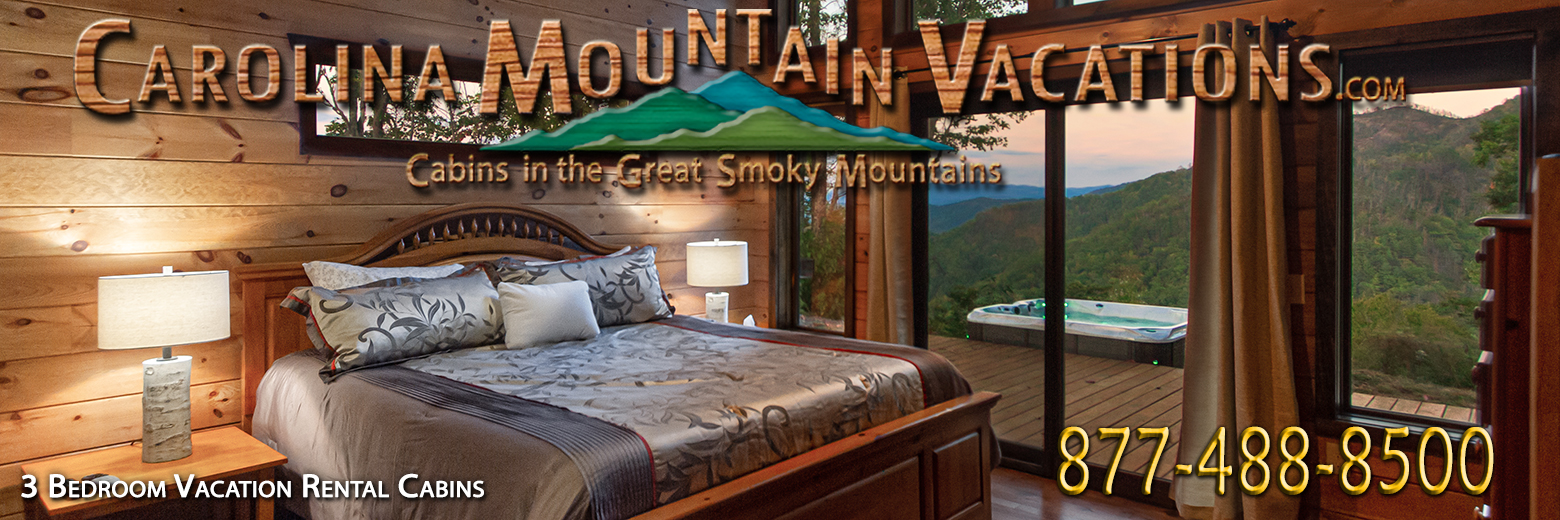 cabins city the cabin mountain of rental bryson cherokee in rentals list managed carolina nc header bedroom nantahala by