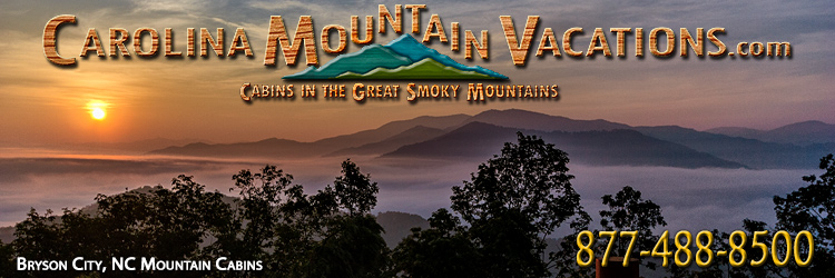 nc smoky cabins bryson rentals rental watershed resort cabin mountains city