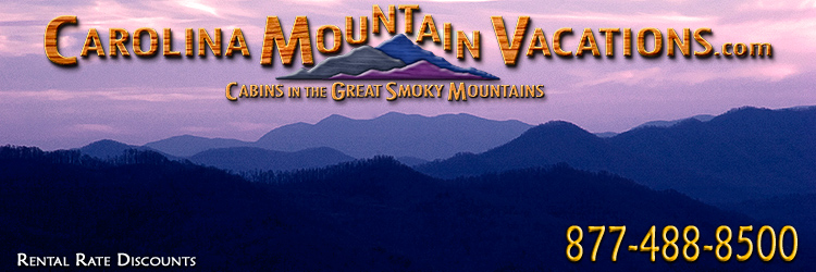 Vacation Discounts and Specials for NC Mountain Cabin Rentals in the Bryson City, Cherokee, nantahala and Fontana Lake areas of the North Carolina  Smoky Mountains by Carolina Mountain Vacations