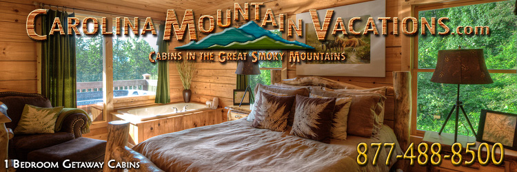 Romantic Getaway nc mountain log cabins rentals 1 bedroom