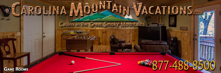 NC Mountain Rental Cabins With Pool Tables In The Bryson City - Pool table rental nyc