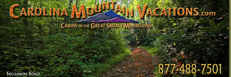 Rental Policies Info for Carolina Mountain Vacations