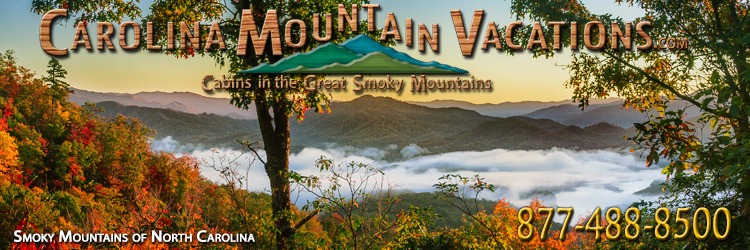 rental bryson pin vacation luxury cabin rentals dreams cabins smokies and in mountaintop pinterest the city near nc